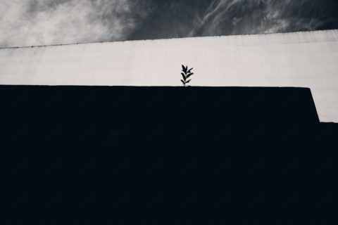 Laurence-chellali-espace-10